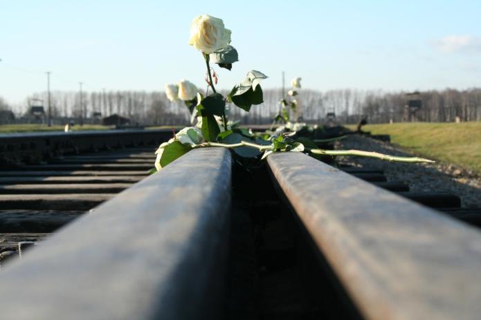 Auschwitz vía de tren