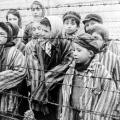 child-survivors-of-auschwitz